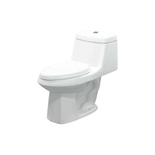 Transolid Jackson 1-Piece Elongated Vitreous China Dual Flush 1.6/1.0 gpf Toilet with toilet seat